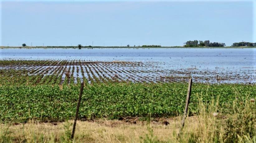 Emergencia hídrica: el 8 de marzo es la fecha límite para que productores afectados presenten su declaración jurada