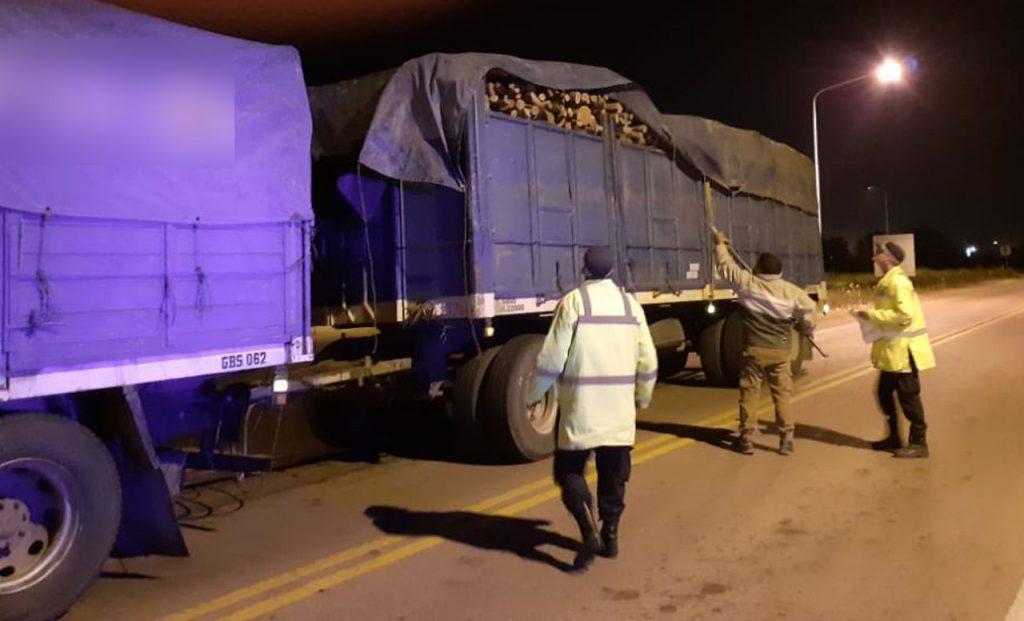 Pinedo: interceptan camión con 27 toneladas de leña sin avales de ingreso